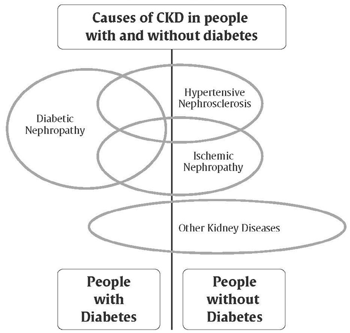 Ch29-Fig1-Causes-of-CKD-in-people-with-and-without-diabetes.jpg