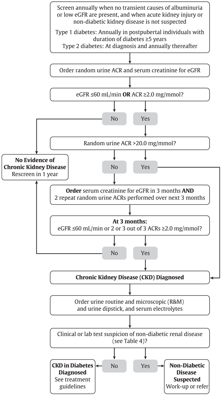 Ch29-Fig3-A-flowchart-for-screening-for-CKD-in-people-with-diabetes.png